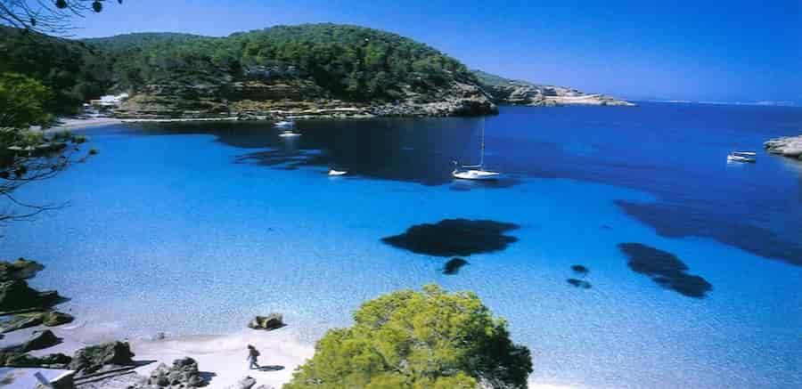 Yacht charter in Bassa Cove, Ibiza, Balearic Islands